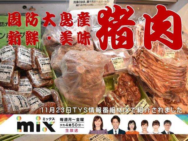周防大島産猪肉大量入荷中!